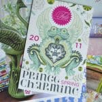 Prince Charming fabric