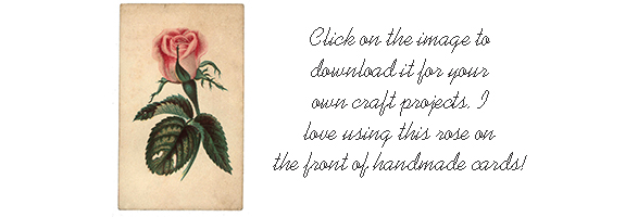rose_download