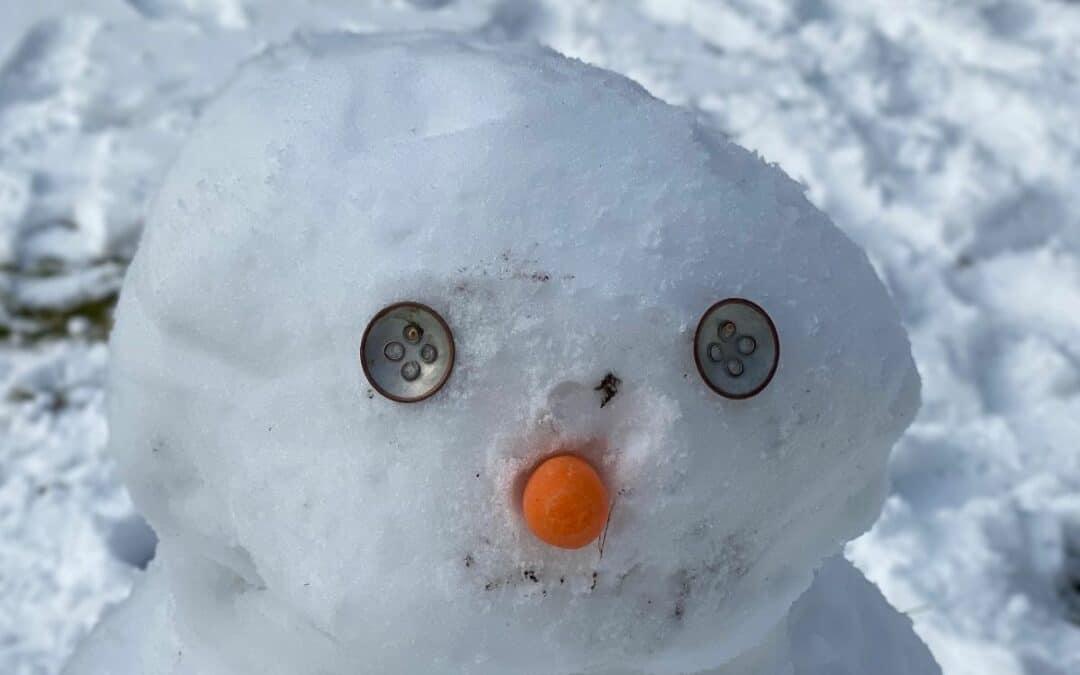 Joy of Making a Snowman